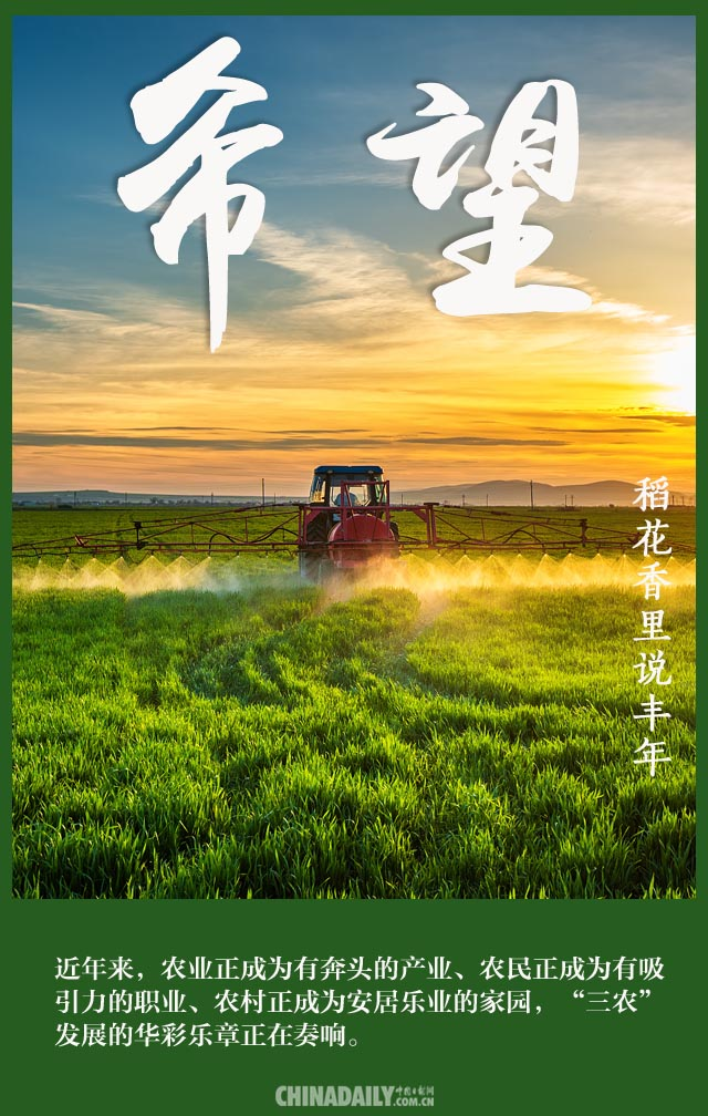 【海报】致敬农民:稻花香里说丰年